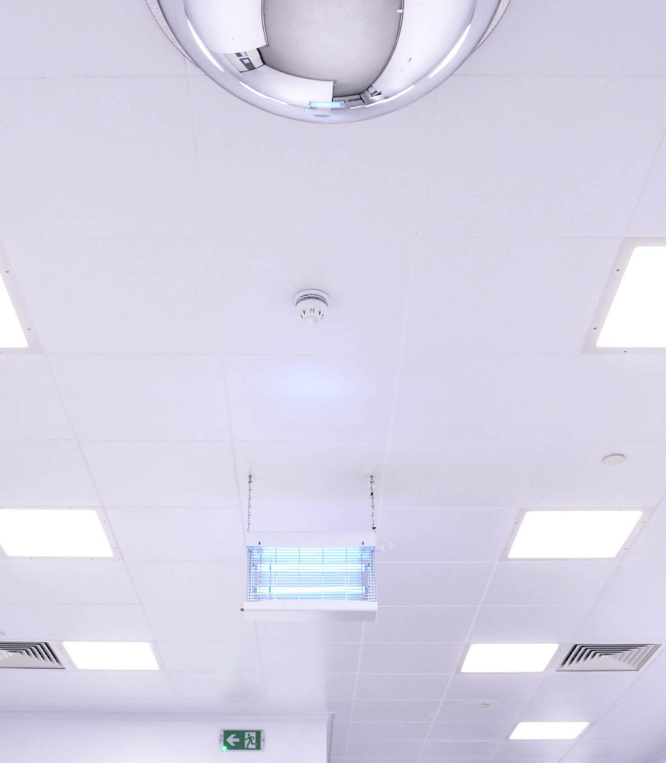 ceiling1portrait