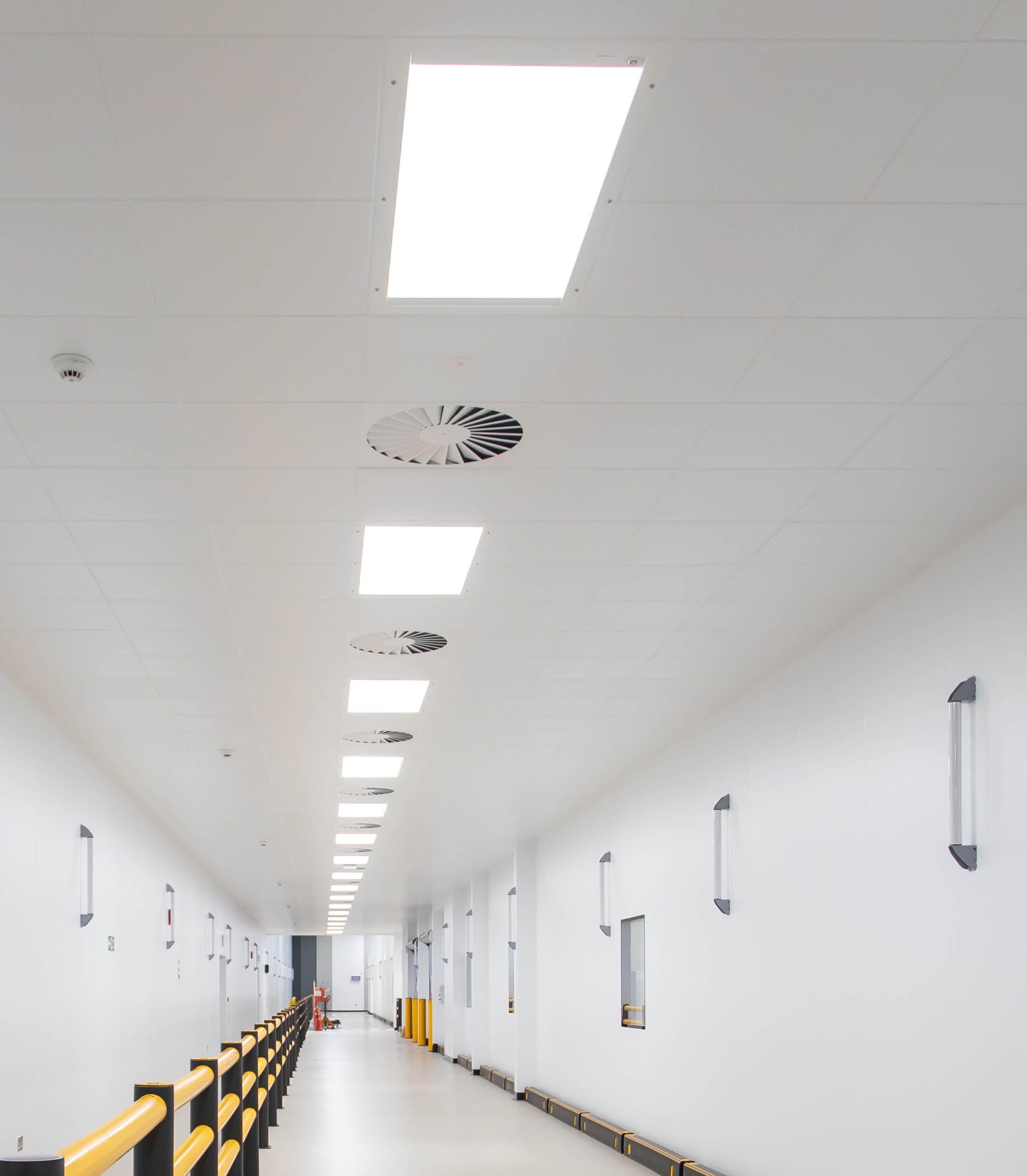ceiling1portrait2